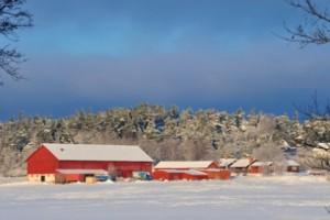 Barkarby gård