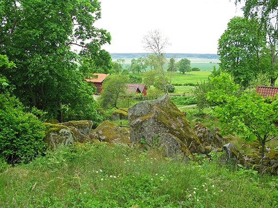 Landskap Hammarby