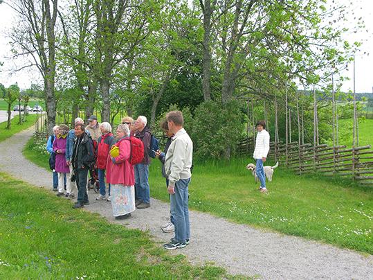 På utflyk ttill Linnés Hammarby