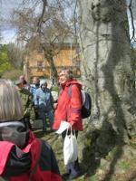 Arboretum 1 200