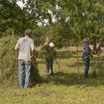 Slåtter 5 Väsby hage